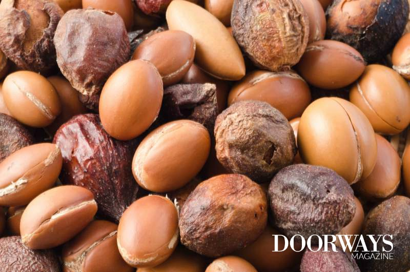 Argan Oil: A Complete Guide to Health Benefits and Uses