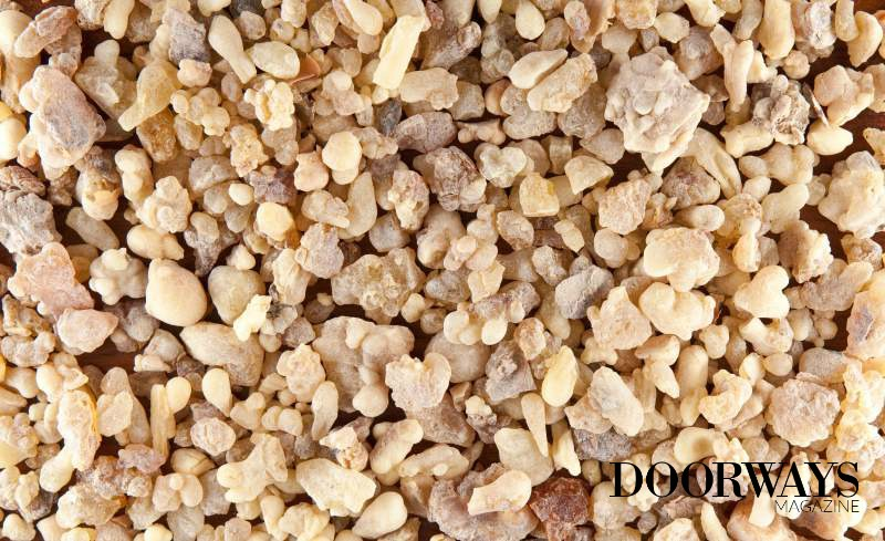 Frankincense Oil: Your Secret to Healthy Beautiful Skin?