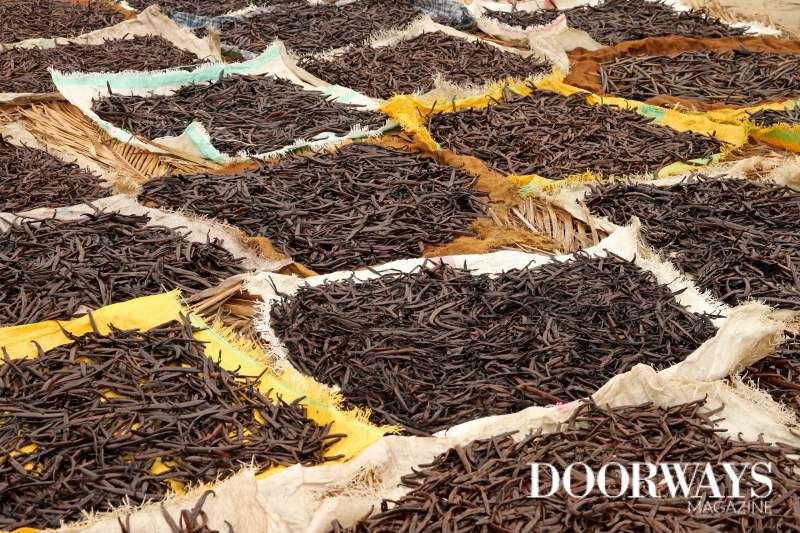 3 Amazing Benefits of Vanilla Essential Oil